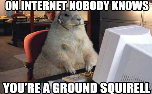 On internet nobody knows you're a ground Squirrel Memes