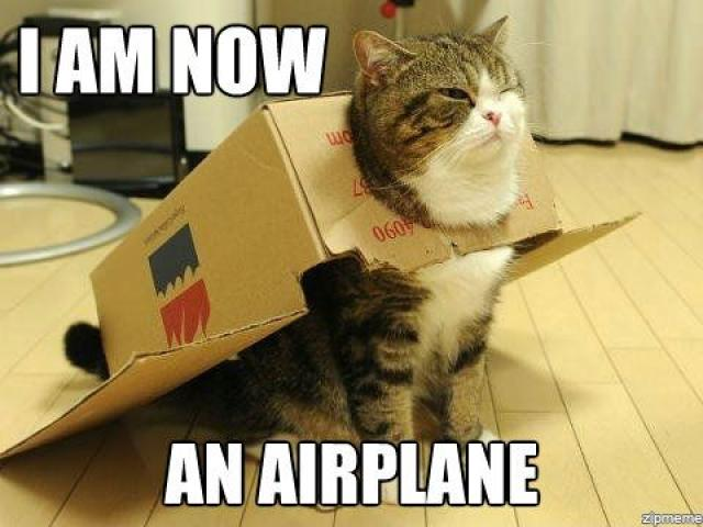 Plane Meme I am now an airplane