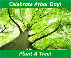 Plant A Tree Happy National Arbor Day Images