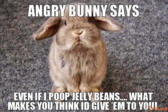 Rabbit Memes Angry bunny say even if i poop jelly beans what makes