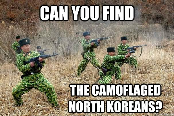 Safety Meme Can you find the camoflaged north koreans