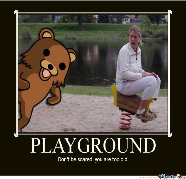 Safety Meme Playground don't be scared you are too old