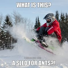 Sled Meme What is this a sled for ants