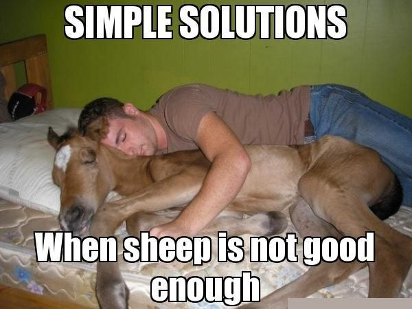 Sleeping Meme Simple solutions when sheep in not