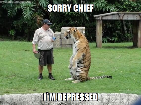 Sorry chief I'm depressed Tiger Meme