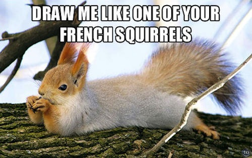 Squirrel Meme Draw me like one of your french squirrrels
