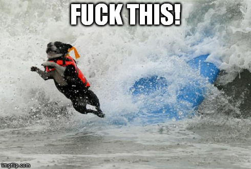 Surfing Meme Fuck this