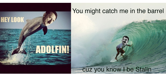 Surfing Meme Hey look adolfin you might catch