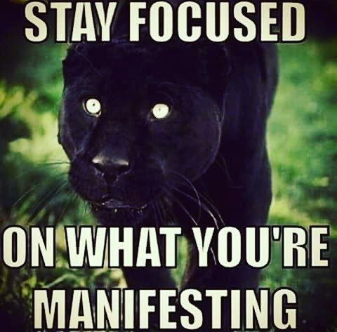Tbt Quotes Stay focused on what you're manifesting