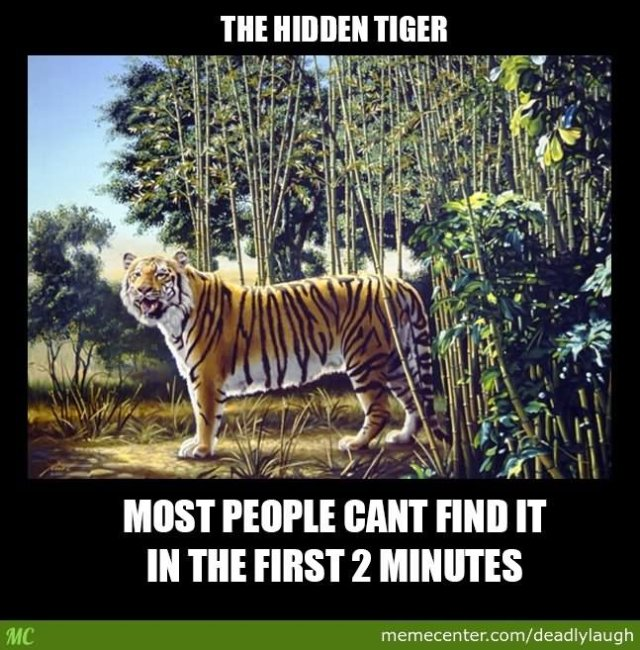 Tiger Meme The hidden tiger most people can't find it in the first