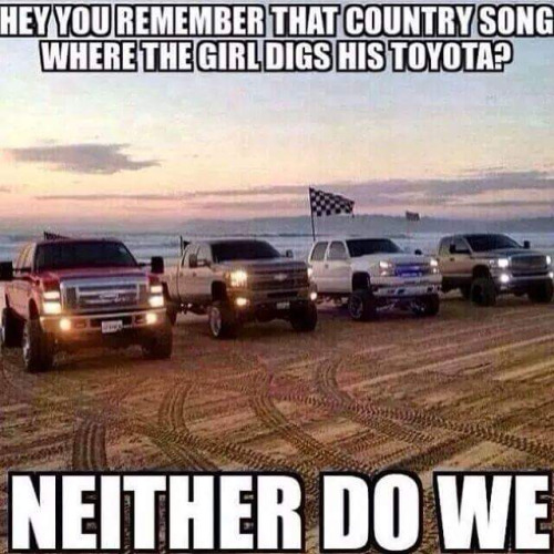 Truck Memes hey you remember that country song where the girl digs his toyata