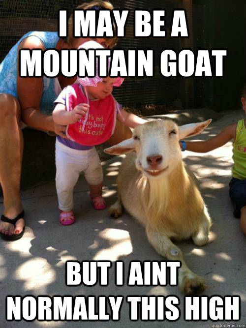 Truck Memes i may be a moutain goat but i ain't normally this high