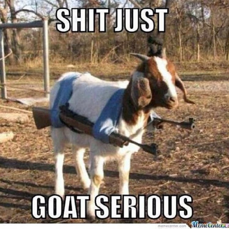 War Memes Shit just goat serious