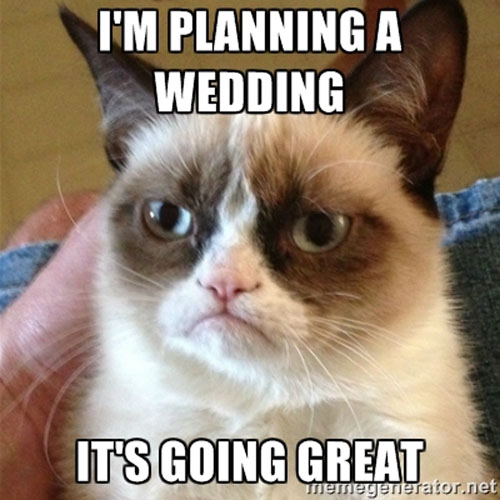 Wedding Meme I'm planning a wedding it's going great