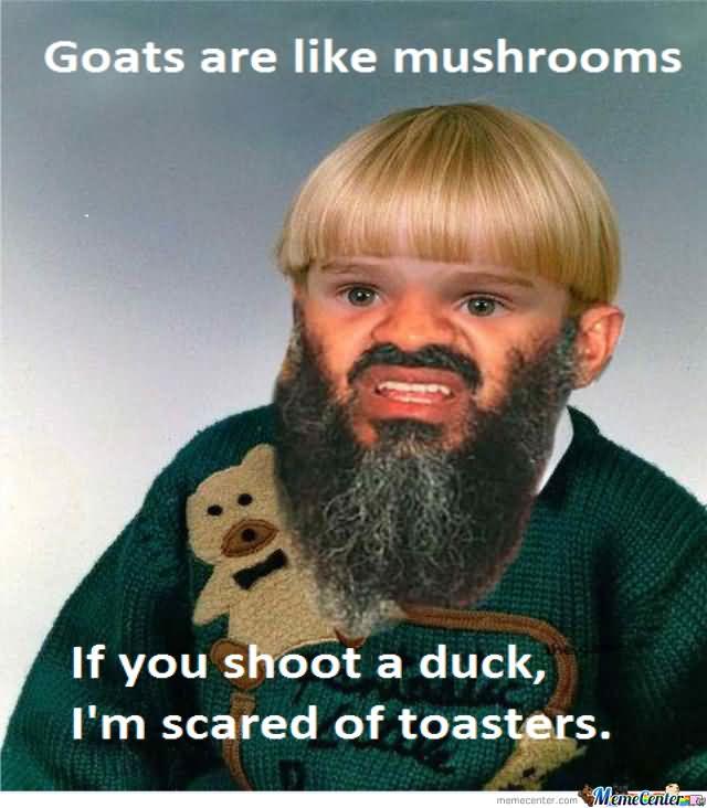 Weird Meme Goats are like mushrooms if you shoot