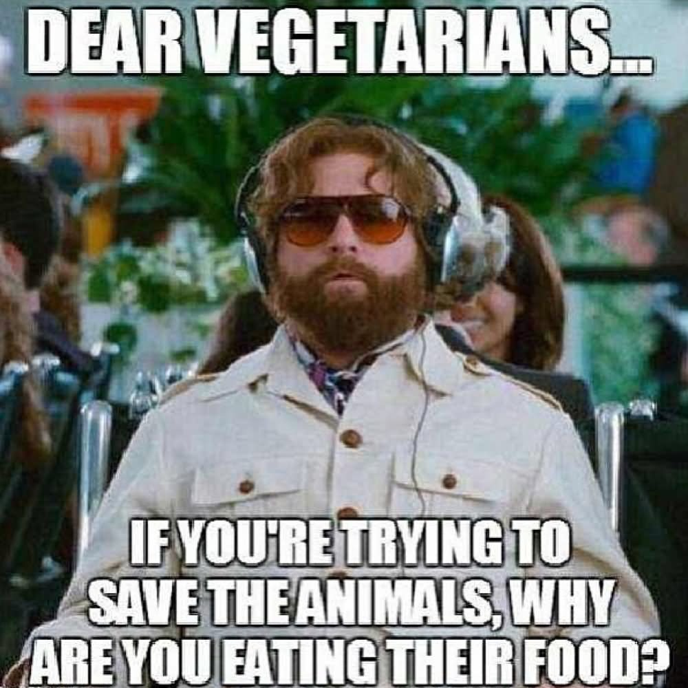 Weird Memes Dear vegetarians if you're trying to save