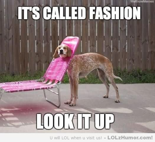 Weird Memes it's called fashion look it up`