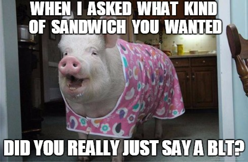 When i asked what kind of sandwich you wanted did you Pigs Meme