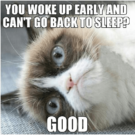 You woke up early and can't go back to sleep good Sleeping Meme