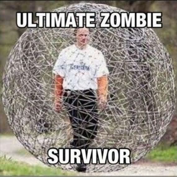 Zombie Meme Ultimate zombie survior