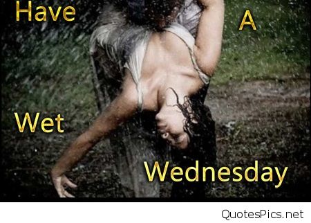 Hump Day Meme Dirty Have a wet Wednesday