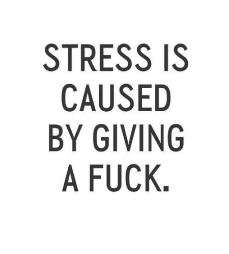Hump Day Meme Dirty Stress is caused by giving a fuck