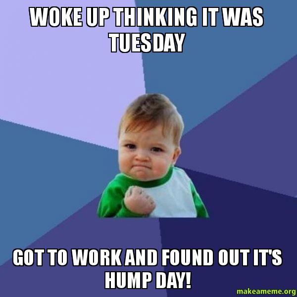 Hump Day Work Meme Woke up thinking it was Tuesday got to work