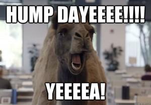 Hump dayeee yeeea Hump Day Meme