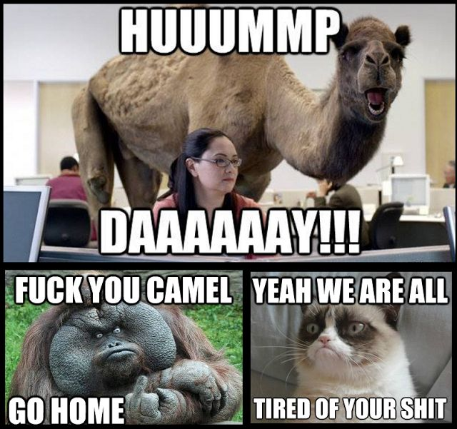 Wednesday Work Meme huuummp daaaaaay!!!!