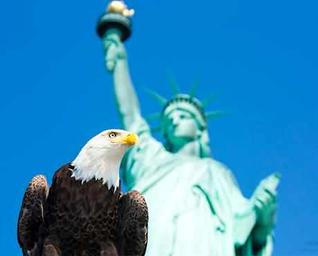 American Eagle Day Greetings Wishes Images