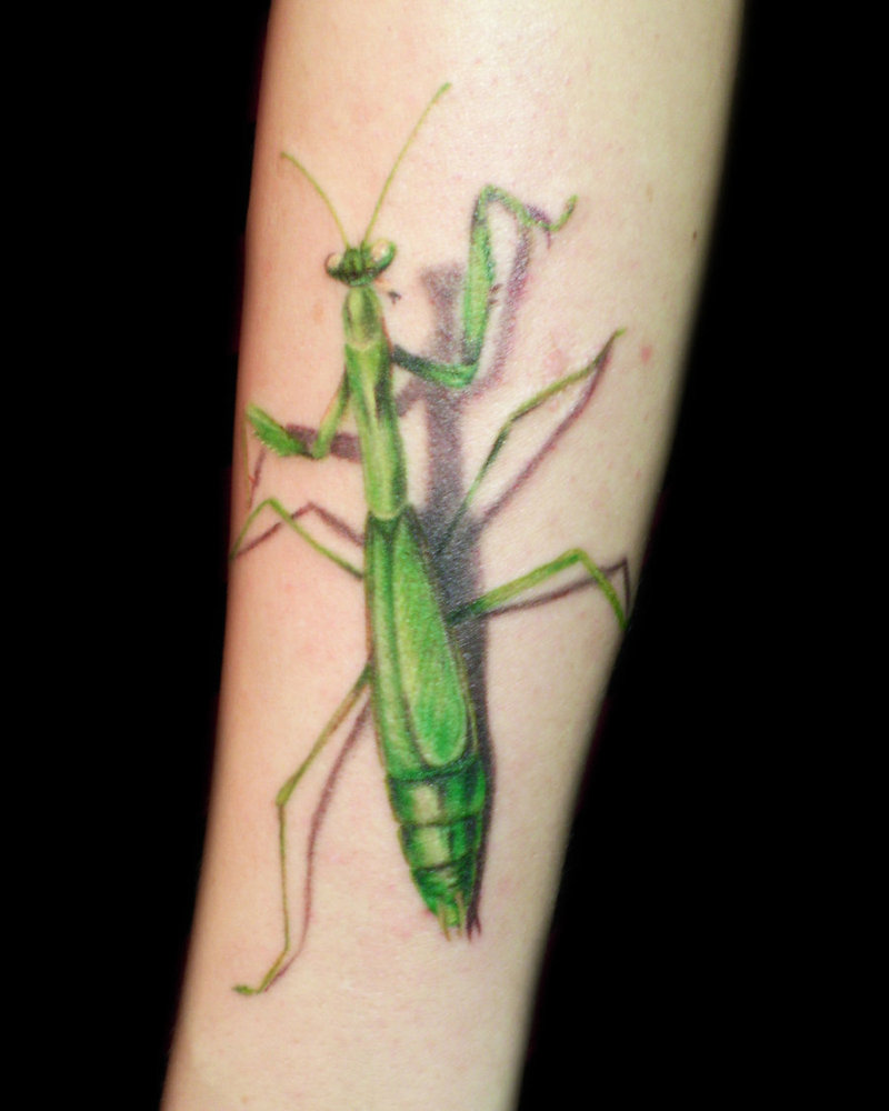 Praying Mantis Tattoos