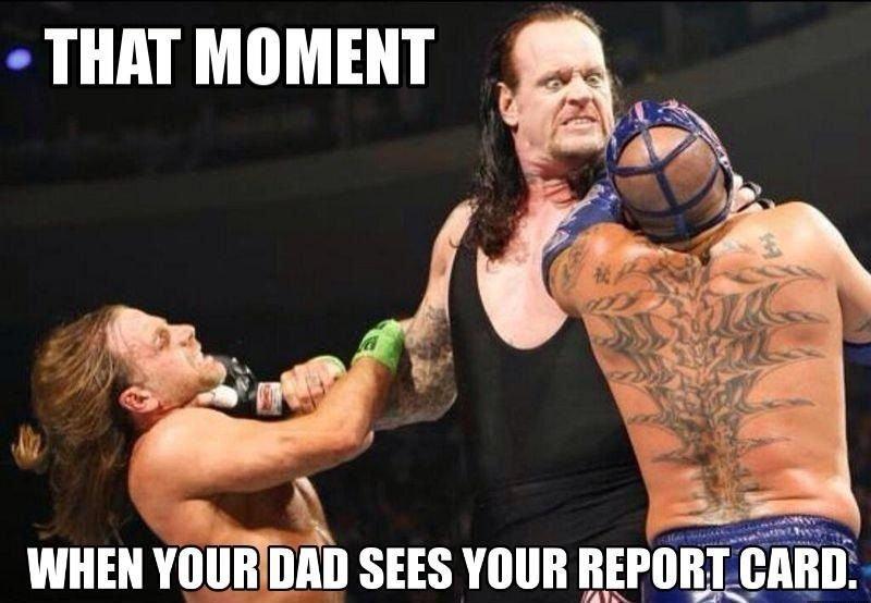 WWE Memes 008