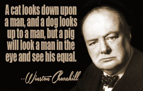 Winston Churchill Quotes Sayings 20