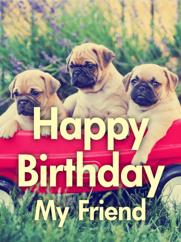 Animal Birthday Greetings Card 14