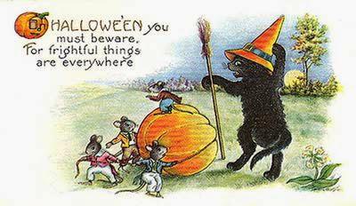 Unique black cat halloween card