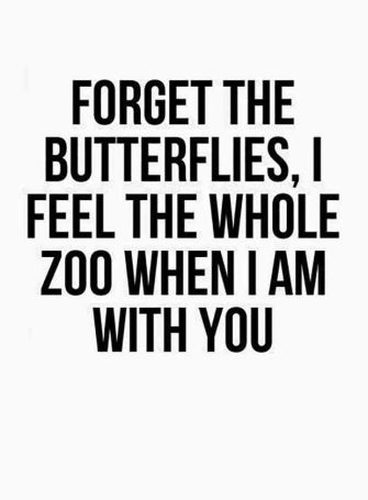 Forget the butterflies WCW Quotes