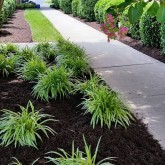 Lawn Care Chesterfield VA | Picture Perfect Lawn Maintenance (804) 530-2540