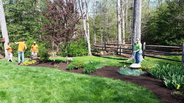 Birkdale Lawn Care Fertilization Weed Control by Picture Perfect Lawn Maintenance | (804) 530-2540