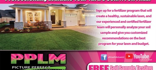 Paget Lawn Care   Fertilized By PPLM   (804)530-2540   Green Lawns In VA