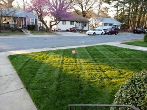 Hopewell Lawn Care