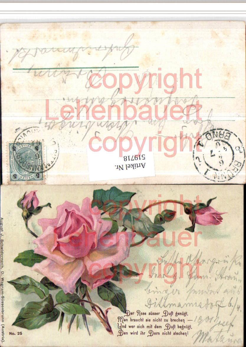Rosen Spruch Die Schonsten Blumenzitate Und Spruche Uber Rosen