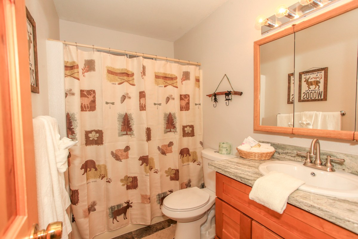 Second bathroom with shower bath and cabin decor.