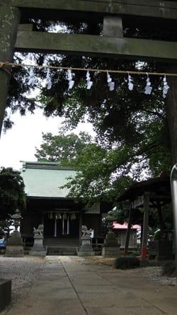 Miyado-Schrein