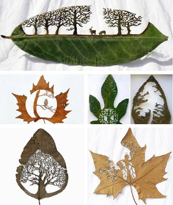 leaf-art-work-by-Lorenzo-Duran