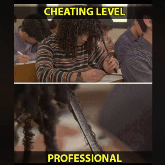 cheating level professional