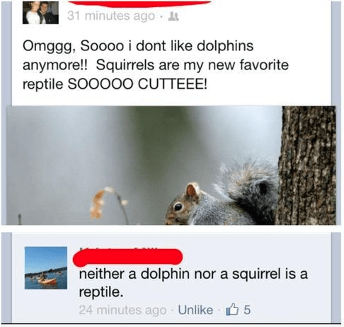 gk about reptiles