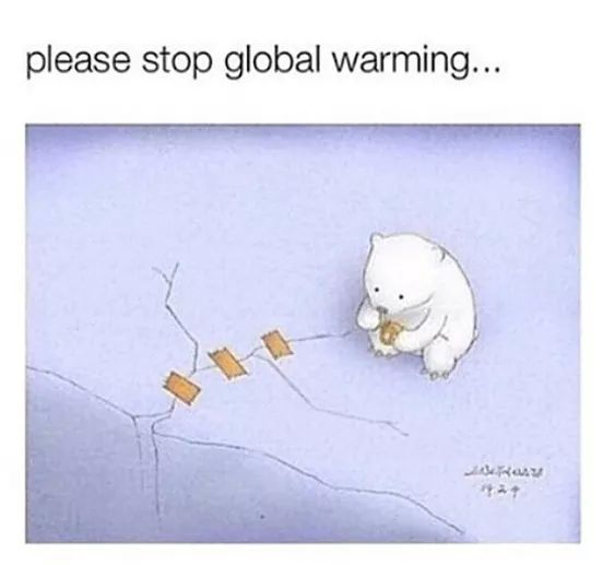 Sweet bear trying his best to stop global warming