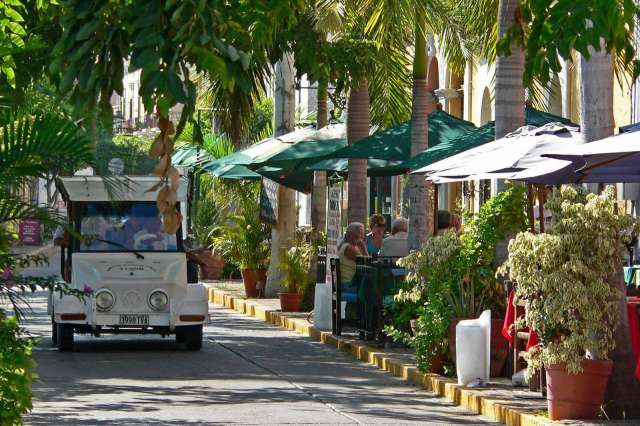 Mazatlán's Famous Palmonia