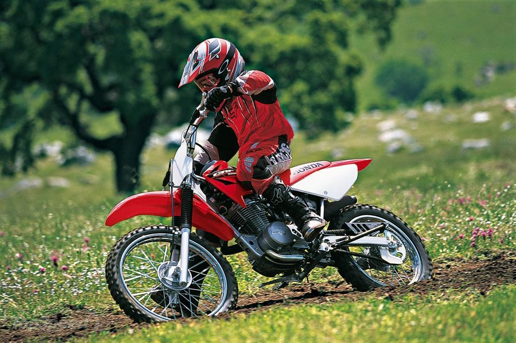 2013 Honda CRF100F Picture 503142 Motorcycle Review