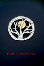 Moon_in_Tree_Pin